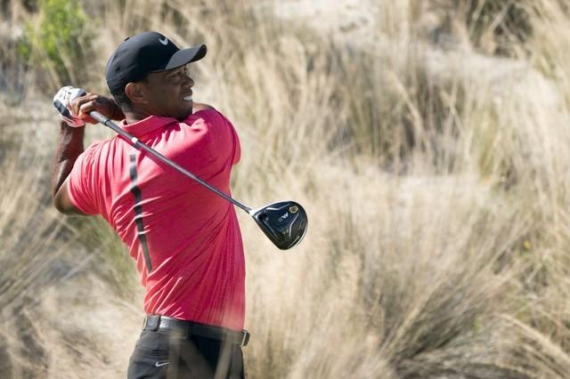 Tiger still a major threat, say Calcavecchia and Janzen
